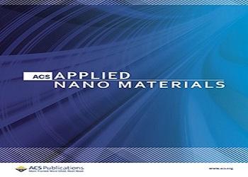 Članak prof. dr. sc. Igora Đerđa i njemačkih znanstvenika objavljen u časopisu ACS Applied Nano Materials