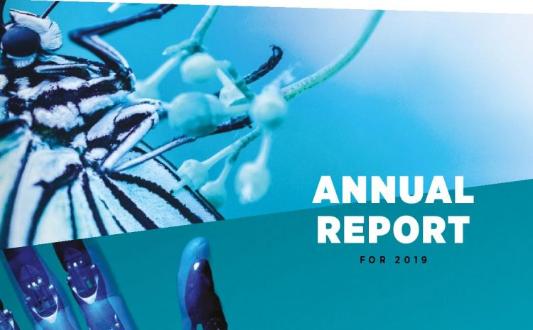 The Foundation's Annual Report for 2019