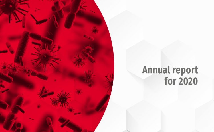 The Foundation's Annual Report for 2020